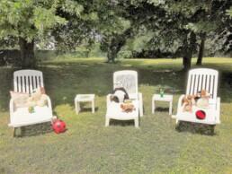 parc des chambres d'hôtes près de vichy